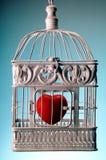 在笼子的心脏 免版税图库摄影