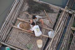 在笼子的提供的鱼 免版税图库摄影