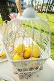 在笼子的柠檬 免版税库存照片