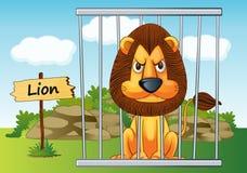 在笼子的狮子 免版税图库摄影