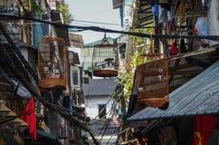 在笼子的鸟在街道河内老处所 免版税库存照片
