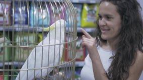 在笼子的鹦鹉美冠鹦鹉 影视素材
