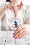在等待新的家的小清楚的玻璃的五颜六色的异乎寻常的积极的泰国战斗的鱼 免版税图库摄影