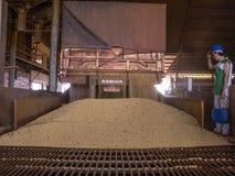 在筒仓的大豆转储 库存照片