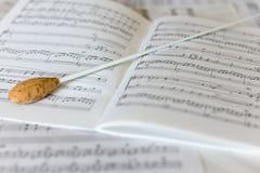 在管弦乐配乐的一根自然指挥警棒 免版税库存图片