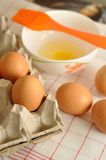 在箱子和蛋黄的未加工的鸡蛋在板材用香料 免版税库存图片