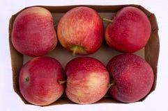 在箱子的六个红色苹果 免版税库存图片