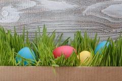 在箱子的复活节彩蛋有在木背景的新鲜的草的 库存图片
