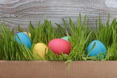 在箱子的复活节彩蛋有在木背景的新鲜的草的 免版税库存照片
