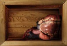 在箱子的心脏 免版税库存照片