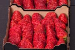 在箱子的新鲜的成熟草莓 库存图片