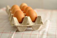 在箱子的未加工的鸡蛋 库存图片