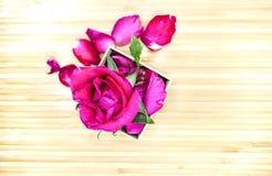 在箱子的桃红色玫瑰在木背景 库存照片