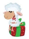 在箱子的羊羔 库存图片