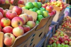 在箱子的美味苹果在市场上 库存图片