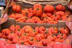 在箱子的自然蕃茄在农夫的市场上 库存图片
