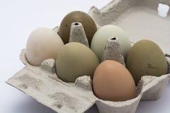 在箱子的色的鸡蛋 图库摄影