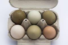 在箱子的色的鸡蛋 库存图片