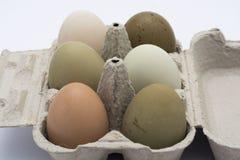在箱子的色的鸡蛋 免版税图库摄影