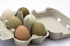 在箱子的色的鸡蛋 库存照片