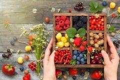 在箱子的被分类的莓果 免版税库存照片