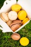 在箱子的鲜美蛋白杏仁饼干 免版税库存图片