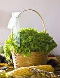 在篮子和其他菜的卷曲蔬菜沙拉 库存照片