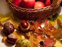 在篮子和栗子的苹果 库存照片
