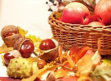 在篮子和秋叶的红色苹果 免版税库存图片