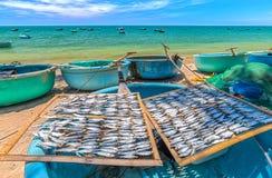 在篮子小船的干鱼干燥 库存照片