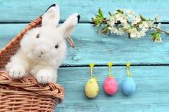 在篮子的兔子用复活节彩蛋和花 免版税图库摄影
