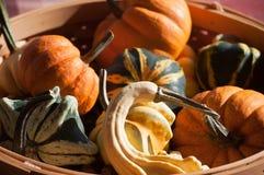 在篮子的各种各样的秋天菜 免版税库存照片