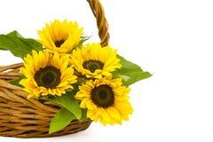 在篮子的向日葵花束 免版税库存图片