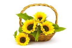在篮子的向日葵花束 免版税库存照片