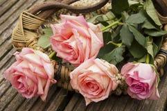在篮子的四朵玫瑰 免版税库存照片