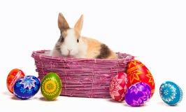 在篮子的复活节彩蛋和兔宝宝 库存照片