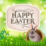 在篮子的复活节兔子 免版税库存图片