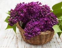 在篮子的夏天淡紫色花 免版税库存图片