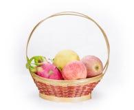 在篮子的多果子在白色背景 库存照片