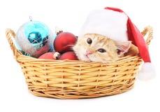 在篮子的小猫与圣诞节玩具 库存图片