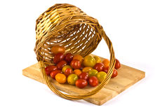在篮子的小的蕃茄 图库摄影
