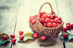 在篮子的山楂树莓果在土气桌上 库存图片