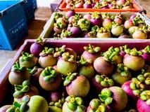 在篮子的山竹果树准备运输 免版税库存照片