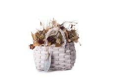 在篮子的干燥花 免版税库存图片