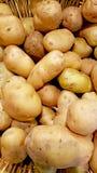 在篮子的新鲜的土豆 免版税库存照片