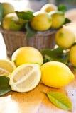 在篮子的新鲜的成熟柠檬 免版税库存照片
