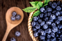 在篮子的新鲜的摘的蓝莓 库存图片