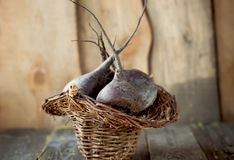 在篮子的新鲜的甜菜 图库摄影