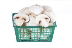 在篮子的新鲜的蘑菇 图库摄影