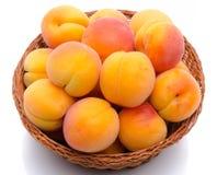 在篮子的新鲜的鲜美杏子 免版税库存照片
